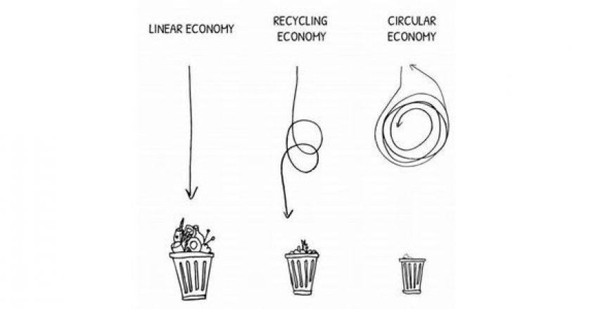 Bioenergy: a circular economy approach