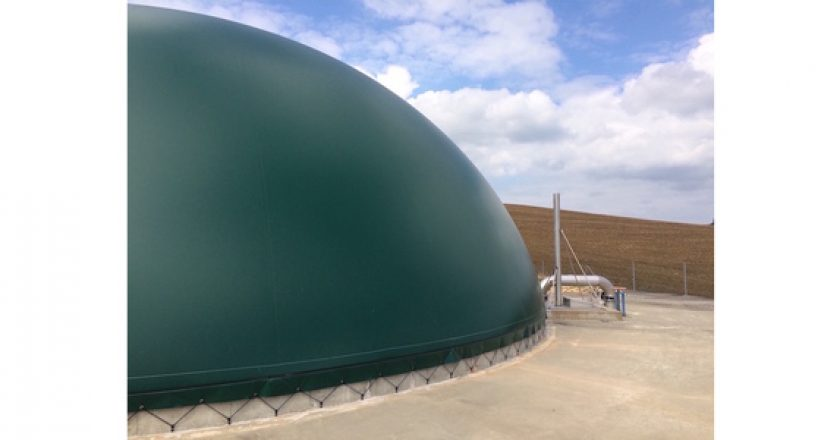 Biogas: The ugly duckling of renewable energy
